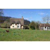 Field Cottage